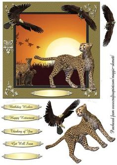 Wild Animals 5 Quick Card Topper  on Craftsuprint - Add To Basket!