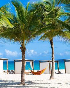 Você prefere uma rede ou uma cama balinesa? Pra gente pode ser qualquer uma desde que tenha essa vista do mar do Caribe. Essa é a estrutura da praia do Hard Rock Hotel & Casino Punta Cana. Já tem post no blog falando mais sobre esse paraíso! Acesse http://ift.tt/1ic9Rtc #NerdsEmPuntaCana #NerdsNoHardRock #iRocklatam #iRockPuntaCana #ThisIsHardRock #hardrockpuntacana