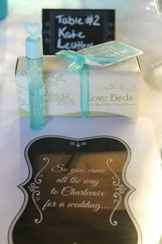 Aqua / Tiffany Blue wedding favor. Bubbles. Love birds. Wedding program. Castle Farms Charlevoix Michigan.  Decorations.