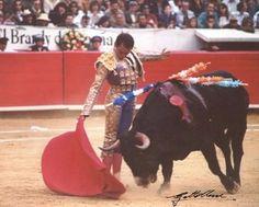 manolo martínez torero | Ha muerto el torero mexicano Mariano Ramos