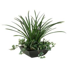 D and W Silks Green Areca Grass with Sage Ivy Silk Planter >>> Find out more about the great product at the image link.