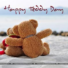 teddy bear wallpapers hd images hd pictures backgrounds 1440 900