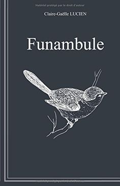 Funambule Independently published https://www.amazon.fr/dp/198025950X/ref=cm_sw_r_pi_awdb_c_x_zMVHAbDARB27E