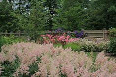 Knapp & Associates, landscape architecture, landscape design, Garden, flowers, fence, perennial garden, Meadow Lane