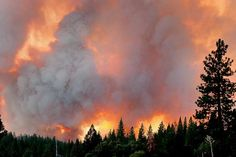 26 Aug The Rim Fire burns north of Highway 120 outside Yosemite National Park near Groveland Yosemite National Park, National Forest, National Parks, Fire Tornado, Tree People, California Wildfires, Dust Storm, Wild Fire, Natural Man