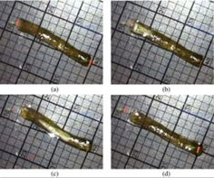 New method of wormlike motion lets gels wiggle through water | via Science Daily