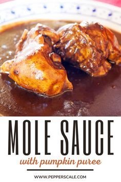 Mole sauce is already deliciously earthy and sweet, making pumpkin – a vegetable native to Mexico – a perfect addition to the mix. We also spice up this mole beyond the mild ancho pepper with a bit of crushed red pepper. If you prefer keeping it mild just remove the red pepper flakes. It'll have a very mild hint of heat.#pumpkinmolesauce #pumpkinmolesaucerecipe #pumpkinmolesauceeasy #pumpkinmole #pumpkinmolerecipe #molesauce Hot Sauce Recipes, Dip Recipes, Meat Recipes, Mexican Food Recipes, Mexican Mole, Mole Recipe, Chipotle Recipes, Spicy Steak, Spicy Aioli