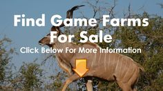 Game Farms For Sale Waterberg