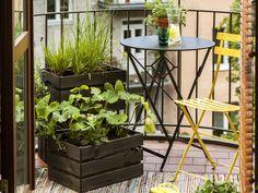 Miejska oaza - letnia aranżacja balkonu | Kolekcja Tikkurila Color Now 2019 - Tikkurila | Farby dekoracyjne | Inspiracje  #tikkurila #tikkurilapotegakolorow #tikkurilainspiruje #tikkurilacolornow2019 #diy #diyideas #diyhomedecor #outsidefurniture #exteriordesign #patiofurniture #patioideas Outdoor Furniture Sets, Outdoor Decor, Plants, Diy, Home Decor, Decoration Home, Bricolage, Room Decor, Do It Yourself