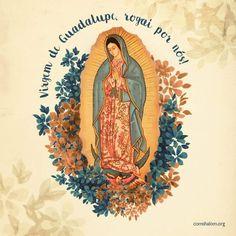 Catholic Religion, Catholic Quotes, Catholic Art, Catholic Saints, Religious Art, Blessed Mother Mary, Blessed Virgin Mary, Catholic Wallpaper, Queen Of Heaven