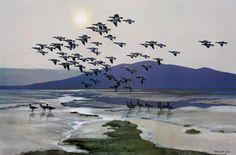Sir Peter Markham Scott: Barnacles Coming Off the Merse at Caerlaverock