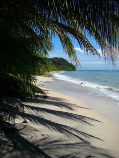 Cahuita, Limon, Costa Rica One of the most beautiful beaches! Cahuita, Costa Rica Reisen, Costa Rica Travel, Oh The Places You'll Go, Places To Travel, Places To Visit, Dream Vacations, Vacation Spots, Wild Life