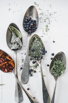 Juniper berry, marjoram, chili peppers, sage and thyme spices on white background