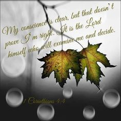 My conscience is clear, but that does not make me innocent. It is the Lord who judges me.   1 Cor. 4:4