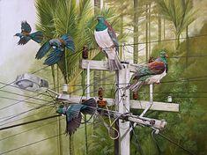 Position of Power by craig platt nz fine art bird and landscape artist Bird Artists, New Zealand Art, Nz Art, Maori Art, Bird Artwork, Bird Illustration, Bird Drawings, Marker Art, Art Festival