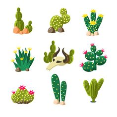 Cactus and Skull Icons, Vector by TopVectors on @creativemarket