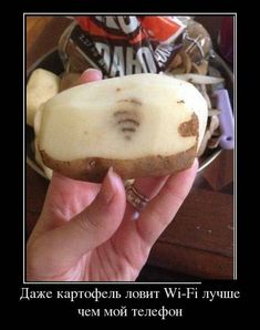 Wifi symbol on potato, that's a miracle. If you forward it to twenty people, your wifi will always have high speed. Camembert Cheese, Muffin, Pudding, Banana, Fruit, Breakfast, Ethnic Recipes, Desserts, Wifi