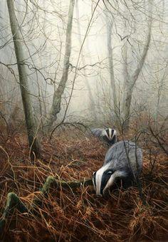 Badgers #mayallbeingsknowpeace