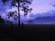 Peaceful Dawn in Cades Cove Photo by Roe Rader -- National Geographic Your Shot