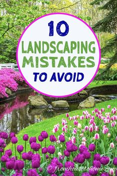 Avoiding these garden landscaping mistakes will really help my lawn and garden to be the best ever this year. Can't wait to update my garden design using these tips that will help create amazing gardens. Backyard Garden Landscape, Home Landscaping, Front Yard Landscaping, Landscaping Supplies, Landscaping Blocks, Landscaping Equipment, Commercial Landscaping, Tropical Landscaping, Next Garden