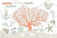 Beach sea corals nautical 03 by GrafikBoutique on @creativemarket
