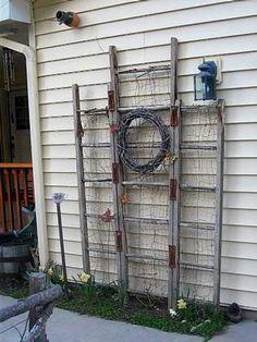 Kirk Willis's wooden extension ladders make a trellis