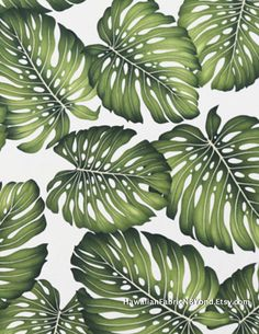 Tropical leaf fabric: Large print of Monstera leaf in beautiful greens. Cotton. Check it out at HawaiianFabricNBYond.Etsy.com