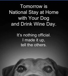 For the dog lovers Drink Wine Day, Wine Drinks, Sounds Good To Me, Your Dog, Dog Lovers, Awesome Things, Memes, Dogs, How To Make