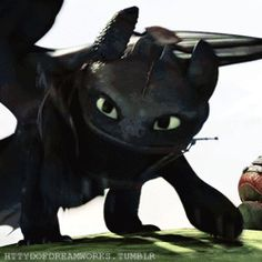 Love Toothless reaction when Stormfly and Astrid come