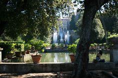Peaceful Reading in the Cardinal's Gardens.  Tivoli, Italy