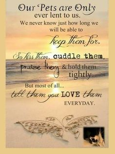 Motivational love life quotes sayings - daily quotes of the Dog Poems, Dog Quotes, Animal Quotes, Pet Loss Quotes, I Love Dogs, Puppy Love, Pet Loss Grief, Pet Remembrance, Love Life Quotes