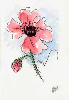 "Original artwork of a red poppy rendered in pen, ink and watercolor. It is titled ""Red Poppy With Blue Background"" and is signed and dated at the bottom with the title on the back. The poppy seems to have a feeling of playfulness about it in its simple line drawing but yet has a"