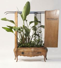 Google Image Result for http://www.shelterness.com/pictures/using-recycled-furniture-as-planters-3.jpg