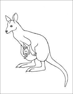 Coloring Page Kangaroo Wallaby