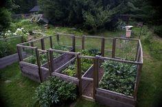 Laura Silverman upstate NY kitchen garden