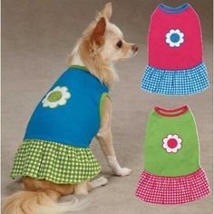 East Side Collection ZM1101 10 19 Gingham Sweeties Dress for Dogs XSmall Blue ** Check out this great product.