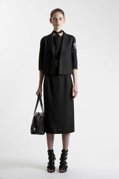 Agnona Spring 2014 Ready-to-Wear Collection Slideshow on Style.com