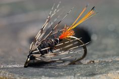 Welcome to Contemporary Wingless Wet Fly Patterns Trout series