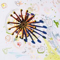 """""""Star Firewheel Flower"""": #firewheelflower #australianrainforestflower #StenocarpusSinuatus - unopened flower buds"""