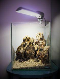 Le Baou - Nano Dennerle 20l - Okho Stones - Aquascaping Hardscape