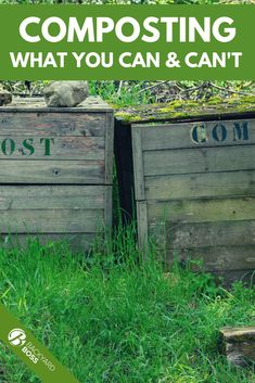 If you are new to composting and have your bin ready, you may be wondering what around your house you can compost. This article will tell you everything you can and some things you cant.