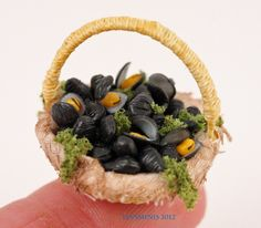 one of my handwoven baskets filled with fresh mussels! thx for object for scale:-)