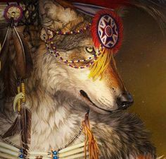 """Lone Wolf in Native American Indian Regalia #nature"""