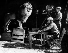 Le Lion MGM en plein tournage