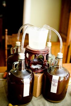 Ted's Homebrew Journal: 4 Herbal Beers