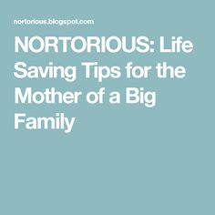 NORTORIOUS: Life Saving Tips for the Mother of a Big Family