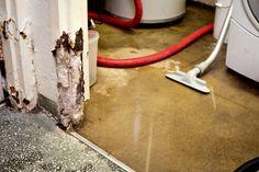 Moisture In The Basement Floor - Foto Gift and Basement Fsaquatics.