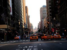 the one and only new york