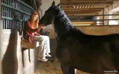 Außer Mika (Hanna Binke) lässt Ostwind niemanden an sich ran. Hanna Binke, Horse Girl Photography, Horse Dance, Riding Stables, Dream Stables, Degu, Two Horses, Black Stallion, Horse Photos