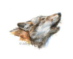 Wolf painting   wolf schilderij illustratie in acryl door Marjolein Kruijt #wolfart #wolves #howlingwolf #wolfpainting #wolvenschilderij #huilendewolf #wildlifeart #wildlifekunst #wildlife